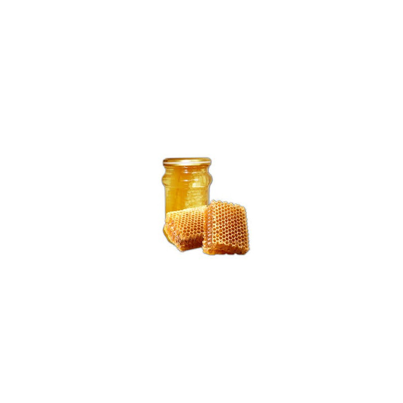 Miel grec biologique de fleurs sauvages avec rayons - MELINO - 400 g