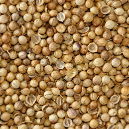 Coriandre graine moulue poudre - AVRAMOGLOU - 50 g